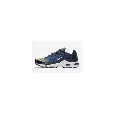 TN 2019 Homme Nike Air Max Plus Gradient Pack homme bleu pas cher